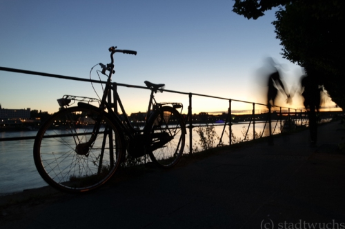 Bonn Rhein Sonnenuntergang Sommerabend