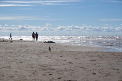 Riga Tipps Strandreise