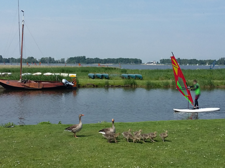 Reisetippps Niederlande Elburg Veluwemeer Familienurlaub Windsurfen Klassenfahrten Lifetime Sport Kleine Seen in Holland Wassersport in den Niederlanden Tipps Geheimtipps für Familien in den Niederlanden