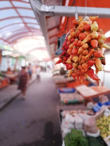 Varna Bulgarien Märkte Markt
